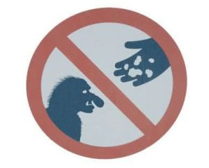 ne pas nourrir les trolls