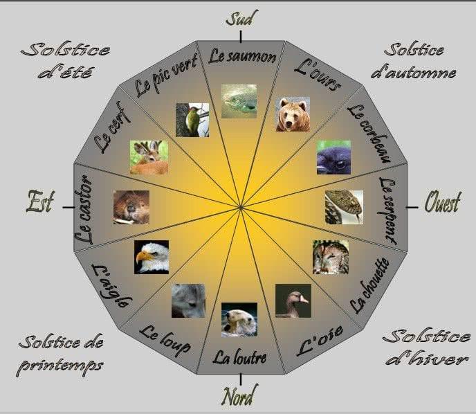 roue chaman avec solstices et animaux totem amérindiens